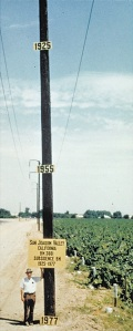 1977-Poland_telephonepole